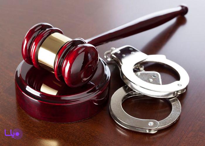 شرکا و معاونین جرم